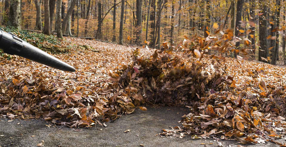 Make clearing leaves easy with these blowers and vacuums