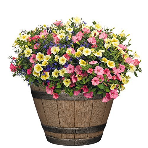 Patio Flower Pots from Amazon