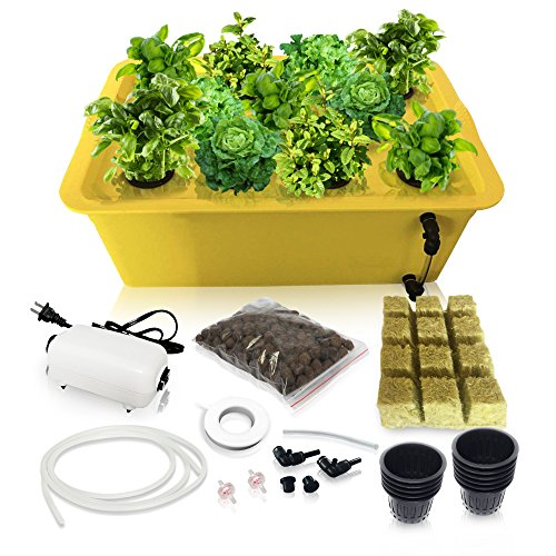 Hydroponics Growing System Kit