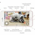 Pawbo Life Pet Camera App View